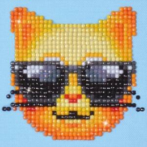 Cica napszeművegben 10*10cm