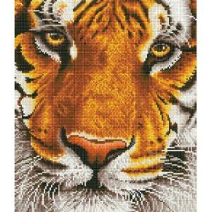 Bengáli tigris 44*50cm