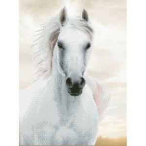 """Fehér ló"" 56*73cm"