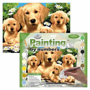 Számozott kifestő - Golden Retrieverek