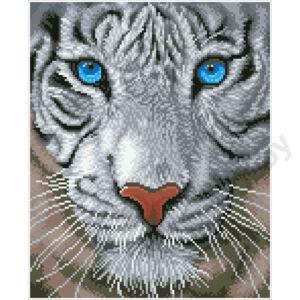 Fehér tigris 34x42cm