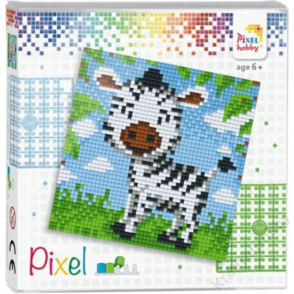 Pixel szett 1 alaplapos - Zebra