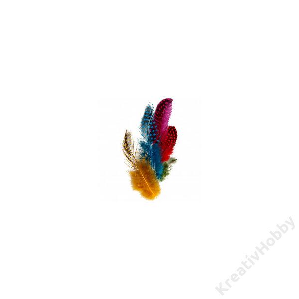 Madártoll - vegyes színek