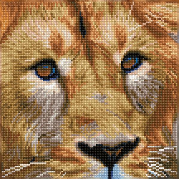 Serengeti oroszlán 30x30cm Teljesen kirakható