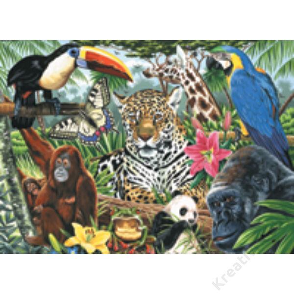 Számozott kifestő - Dzsungel állatai