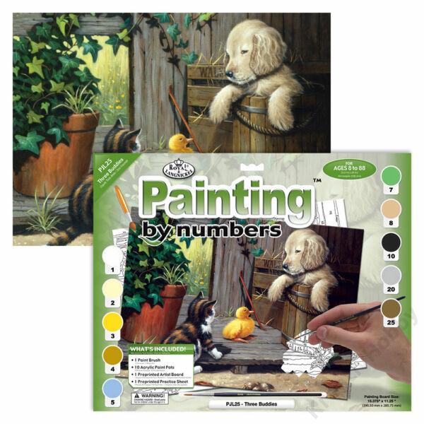 Számozott kifestő - Házi kedvencek
