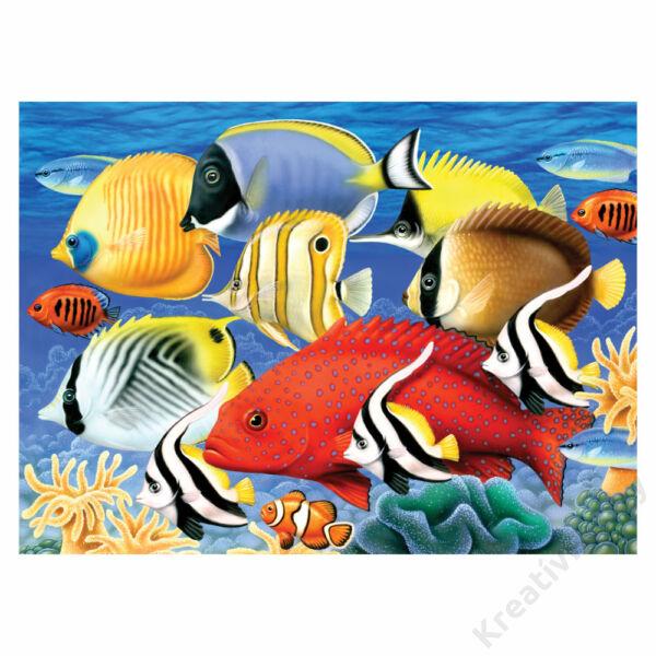 Számozott kifestő, 286*390,5mm - Trópusi halak