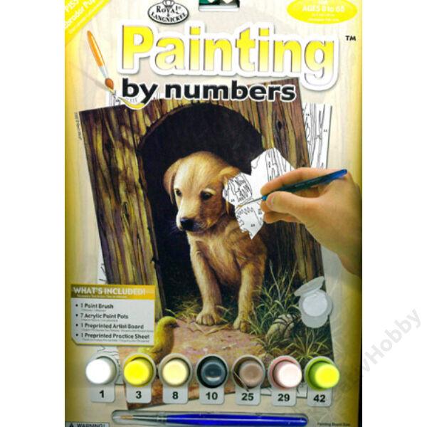 Számozott kifestő - labrador kutyus