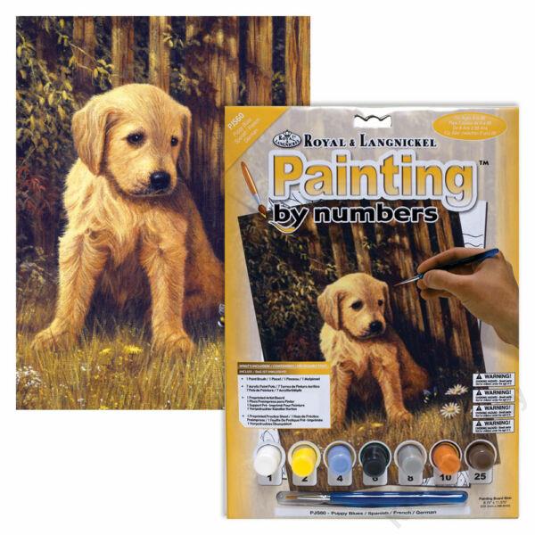 Számozott kifestő, 222,3x298,5mm - Kölyök kutya