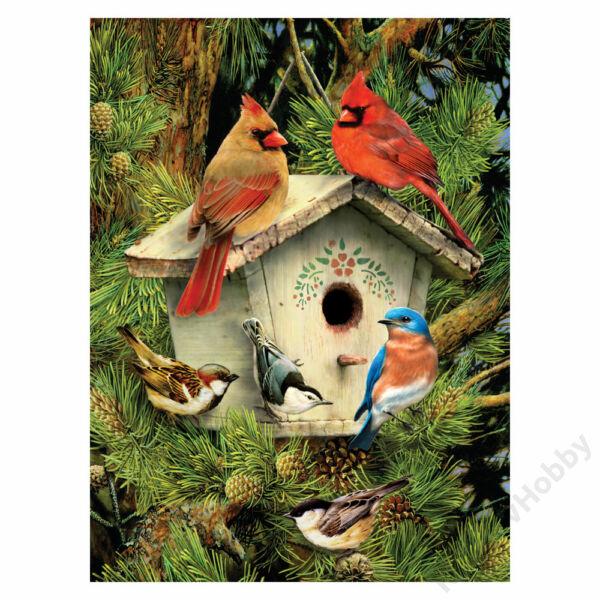 Számozott kifestő - Madárház és madarak