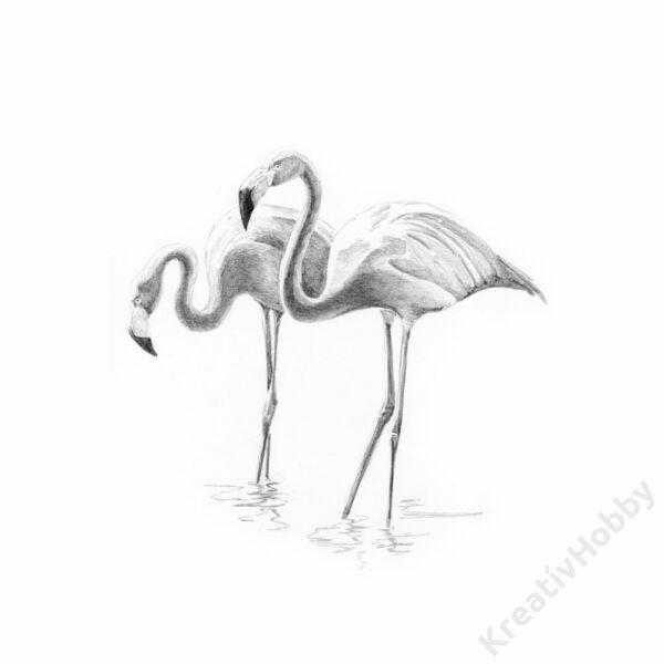 Graf. készlet, mini, 127x178mm - Flamingó