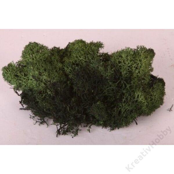 Izlandi moha, 50g/cs, zöld