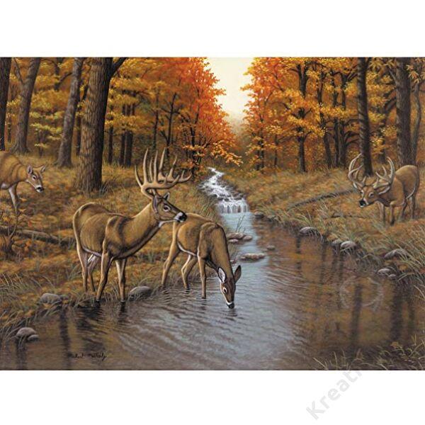 Számozott kifestő - Szarvasok a patakban